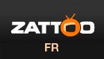 Bester Smart DNS Dienst um Zattoo France zu entsperren